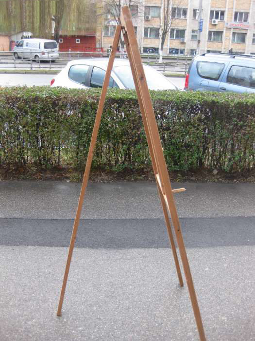 vand-sevalet-pictura-hunedoara profil